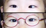 img_syashi02